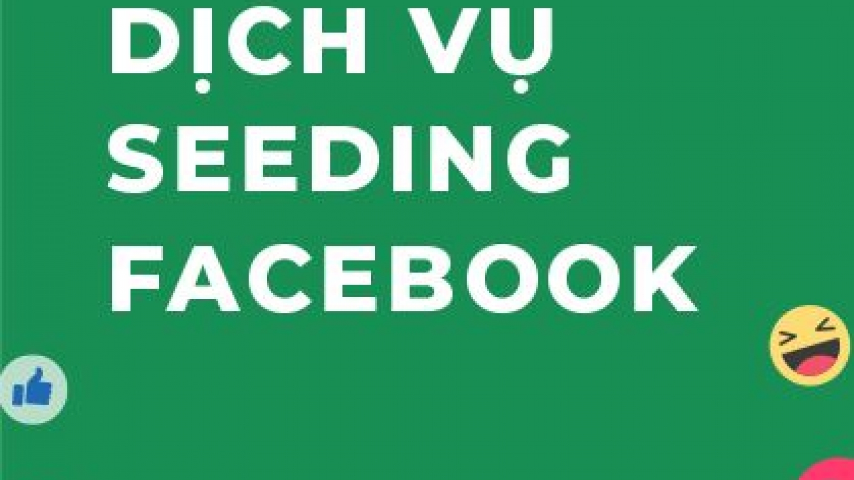 Khuyến mãi dịch vụ seeding facebook của Tigobiz