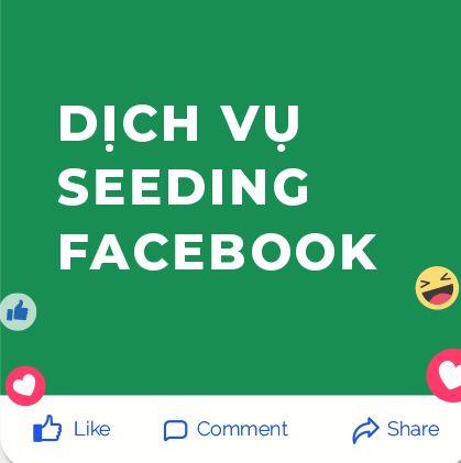 Dịch Vụ Seeding Facebook Chất Lượng