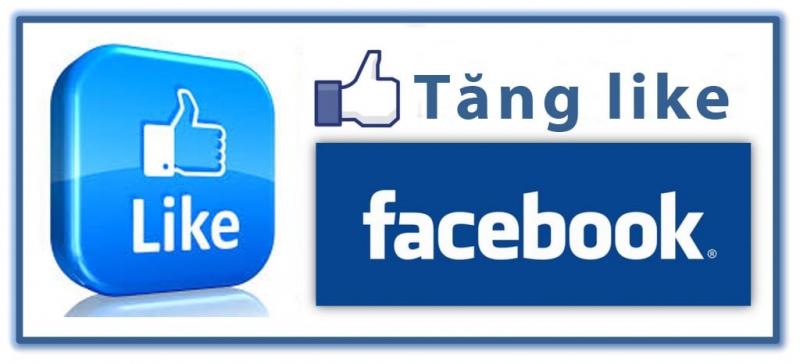 Giới thiệu Dịch vụ tăng like Facebook