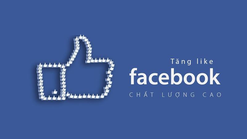 Dịch vụ tăng like fanpage Facebook uy tín