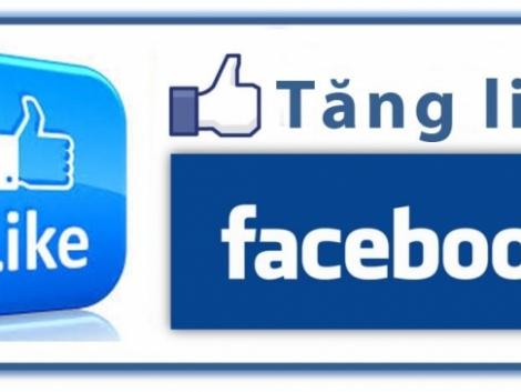 Khuyến Mãi Dịch Vụ Của Khoá Học Tăng Like Facebook